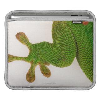Madagascar day gecko (Phelsuma madagascariensis 2 iPad Sleeve