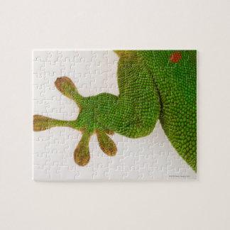 Madagascar day gecko (Phelsuma madagascariensis 2 Jigsaw Puzzle