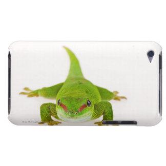 Madagascar day gecko (Phelsuma madagascariensis) iPod Case-Mate Case