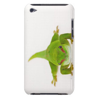 Madagascar day gecko (Phelsuma madagascariensis) iPod Case-Mate Case