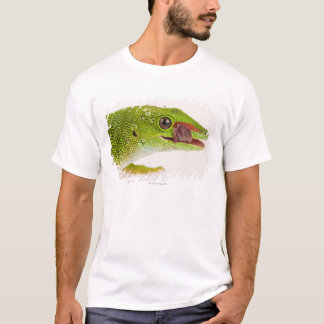 Madagascar day gecko (Phelsuma madagascariensis T-Shirt