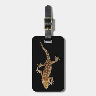 Madagascar ground gecko (Paroedura pictus) on Luggage Tag