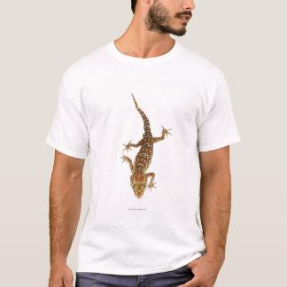 Madagascar ground gecko (Paroedura pictus) on T-Shirt