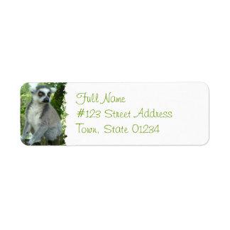 Madagascar Lemur Return Address Label
