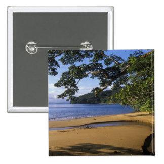 Madagascar, Nosy Mangabe Special Reserve, on 15 Cm Square Badge