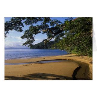 Madagascar, Nosy Mangabe Special Reserve, on Greeting Card