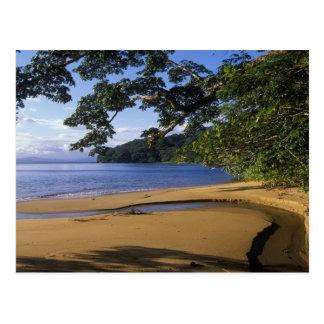 Madagascar, Nosy Mangabe Special Reserve, on Postcard