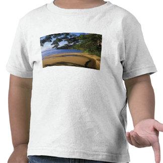 Madagascar, Nosy Mangabe Special Reserve, on Tee Shirts