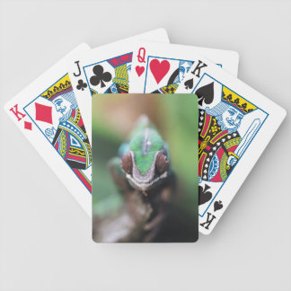 Madagascar, Red bar Panther Chameleon Bicycle Playing Cards