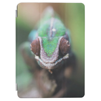 Madagascar, Red bar Panther Chameleon iPad Air Cover