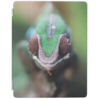 Madagascar, Red bar Panther Chameleon iPad Cover