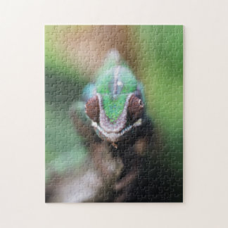 Madagascar, Red bar Panther Chameleon Jigsaw Puzzle