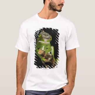 Madagascar T-Shirt