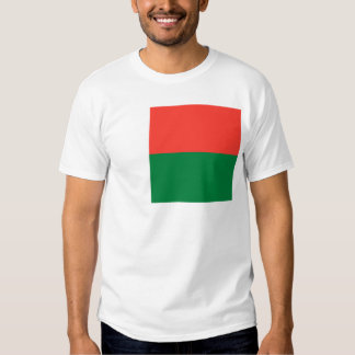madagascar tee shirt