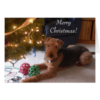 "Maddie says, ""Merry Christmas!"" Card"