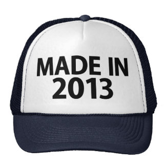 Made in 2013 hat