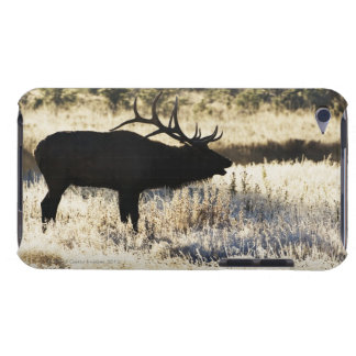 Madison River, Yellowstone NP, Wyoming, USA iPod Touch Case-Mate Case