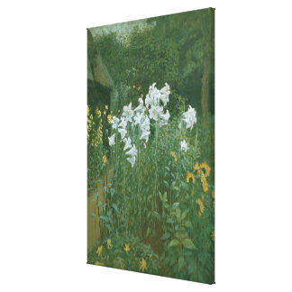 Madonna Lilies in a Garden Stretched Canvas Print