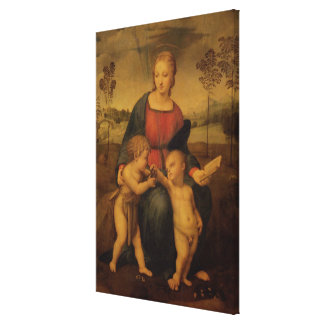 Madonna of the Goldfinch, c.1506 Stretched Canvas Print