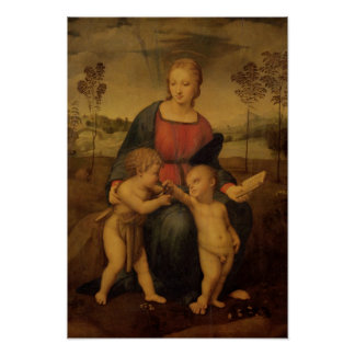Madonna of the Goldfinch, c.1506 Poster