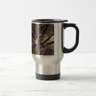 Madrone Bark Mug