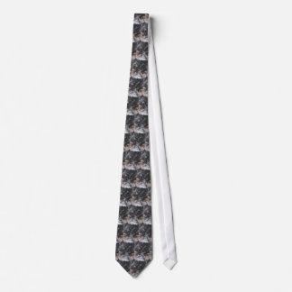 Mae the ewok-type dog tie