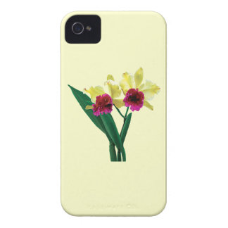 Magenta and Yellow Orchids iPhone 4 Case