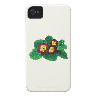 Magenta and Yellow Primroses iPhone 4 Case-Mate Case