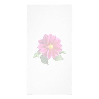 Magenta Gerbera Daisy Custom Photo Card