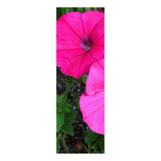 Magenta Morning Glory Bookmark Business Cards