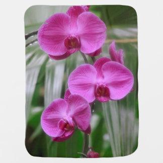 Magenta Orchids Baby Blanket