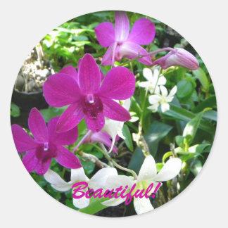 Magenta Orchids Classic Round Sticker
