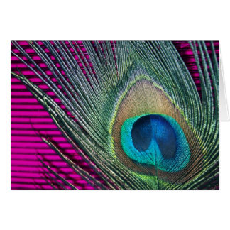 Magenta Peacock with Lines Greeting Card