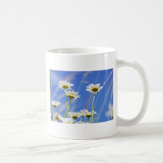 Mageriten Himmel Leucanthemum vulgare Kaffeetasse