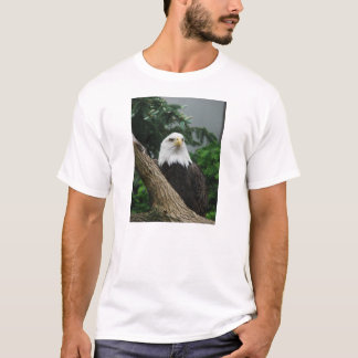 magestic bald eagle resting in tree T-Shirt