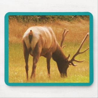 Magestic Bull Elk Mouse Mats