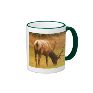 Magestic Bull Elk Mug