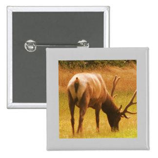 Magestic Bull Elk Pins