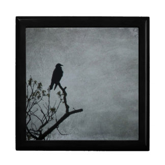 Magestic Crow Large Square Gift Box