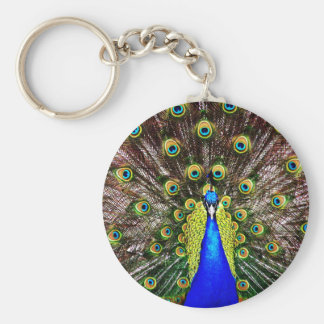 Magestic Peacock Basic Round Button Key Ring