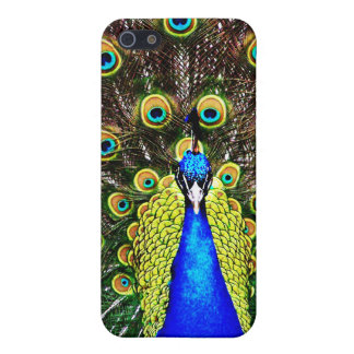 Magestic Peacock iPhone 5 Cover