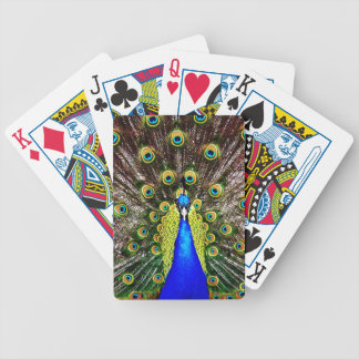 Magestic Peacock Poker Deck
