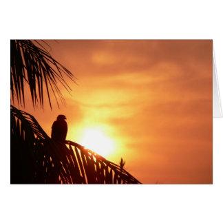 Magestic sunrise greeting card