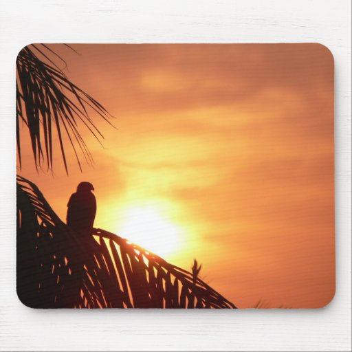 Magestic Sunrise Mouse Pads