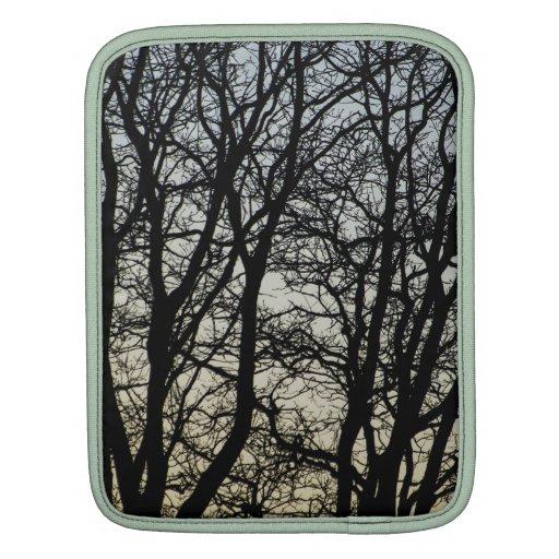 Magestic Tree Closeup iPad Sleeves