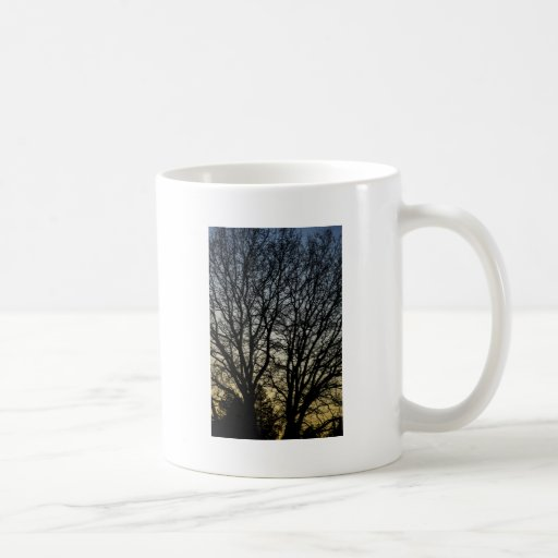 Magestic Tree Closeup Mug