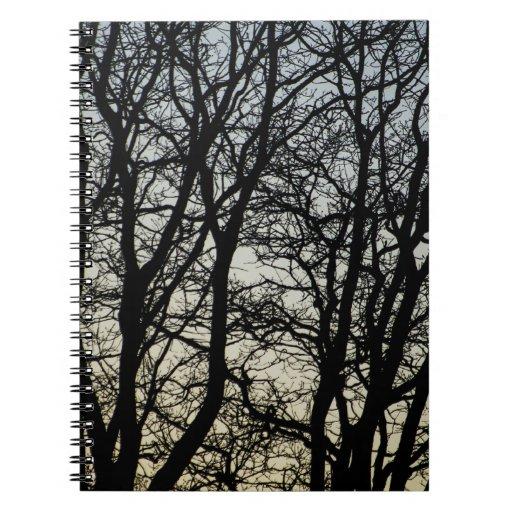 Magestic Tree Closeup Journals