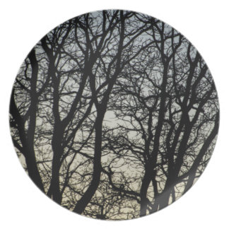 Magestic Tree Closeup Dinner Plates