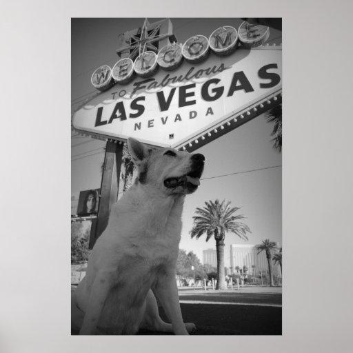 Maggie - Las Vegas Sign
