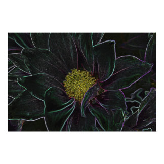 Magic Flower Photographic Print